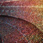 Interview de Me Granturco sur l'actionnariat populaire dans les clubs de sport
