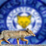 Pourquoi le titre de champion d'Angleterre de Leicester fait du bien au foot